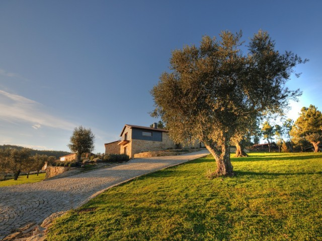 Cover photo of resource - Quinta do Medronheiro