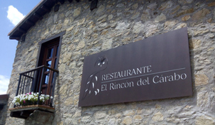 Cover photo of resource de el Rincón del carabo