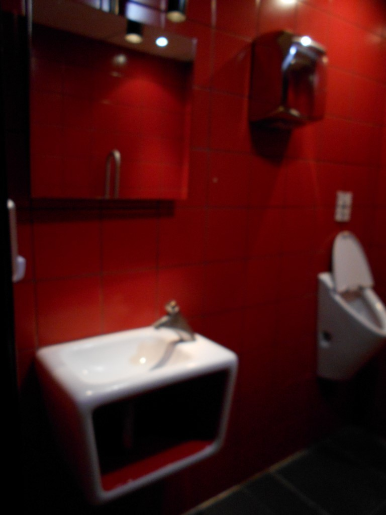 Photo/s of adapted toilet in common area - general information - stand-alone cubicle - characteristics - sink