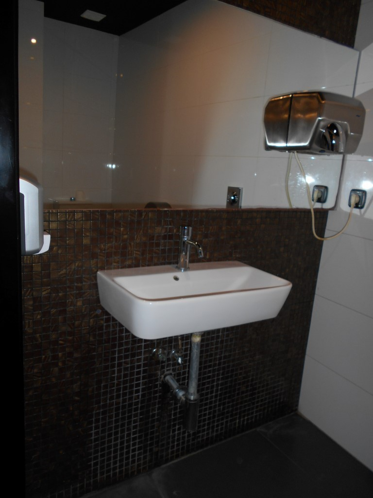 Photo/s of adapted toilet in common area - general information - multiple cubicles - characteristics - sink