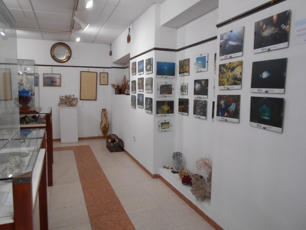 Photo/s of 1º exhibition room - exhibition room