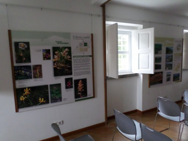 Photo/s of 2º exhibition room - interior room