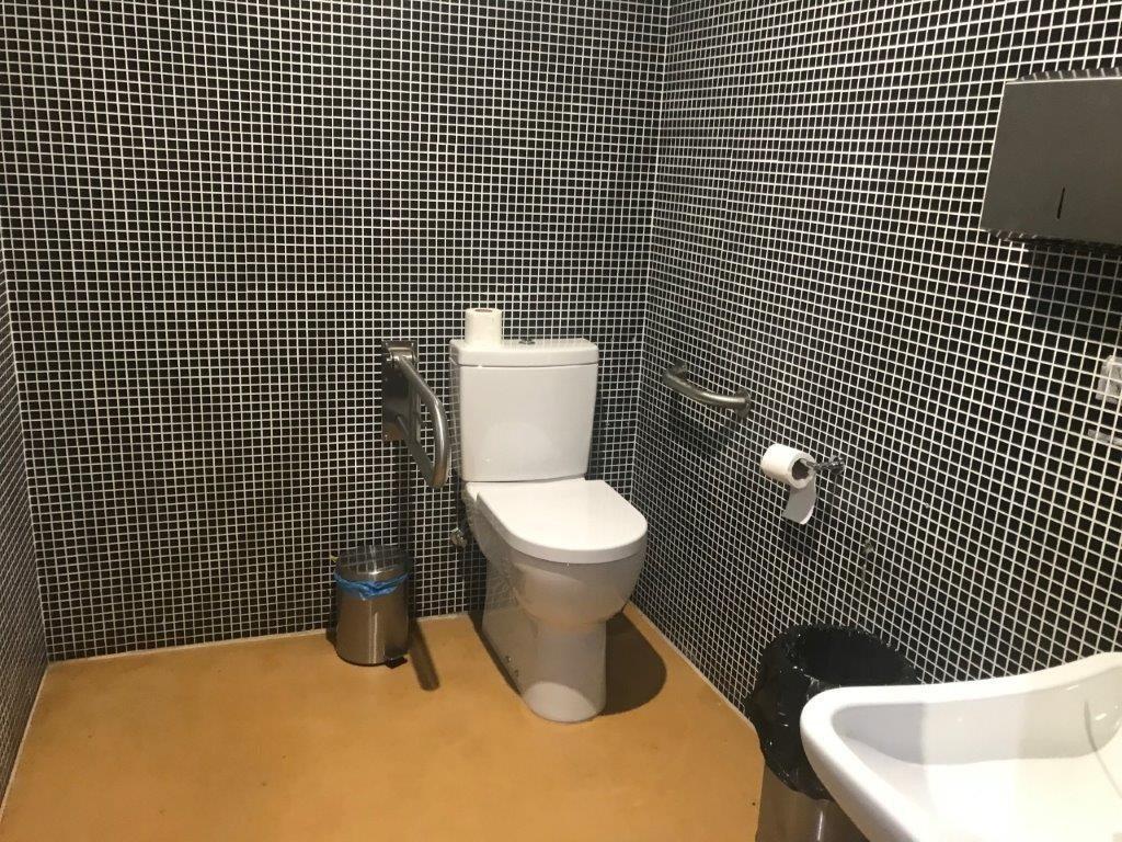 Photo/s of adapted toilet in common area