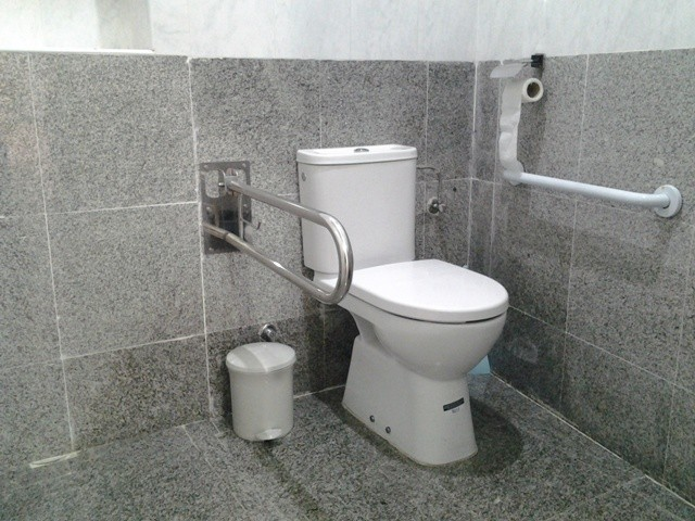 Photo/s of characteristics of adapted toilet in common areas
