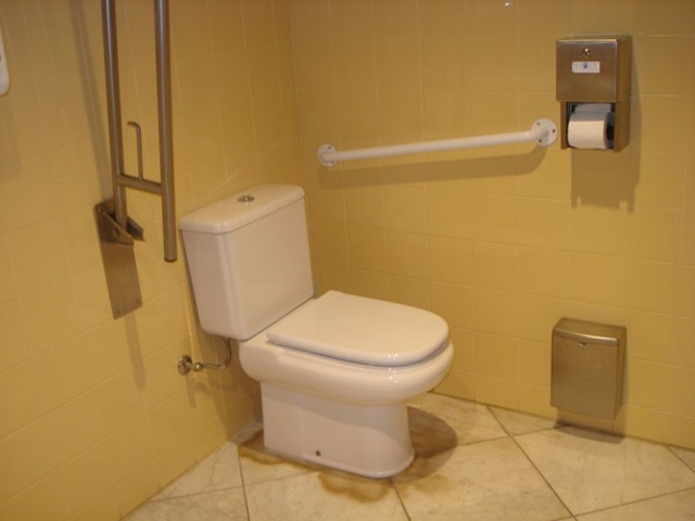 Photo/s of characteristics from adapted toilet in common areas